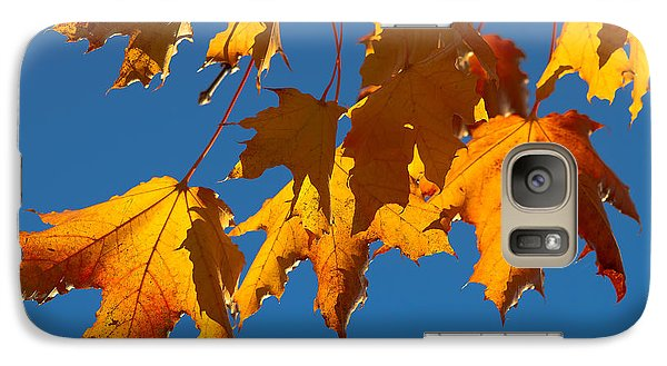 Galaxy Case featuring the photograph Autumn Leaves by Dennis Bucklin