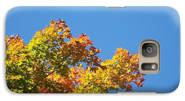 Galaxy Case featuring the photograph Autumn Leaves by Jackie Mueller-Jones