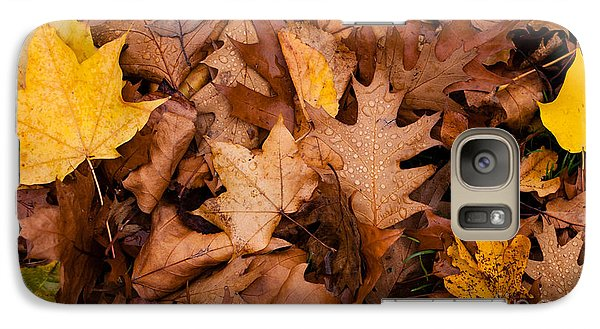 Galaxy Case featuring the photograph Autumn Leaves by Matt Malloy