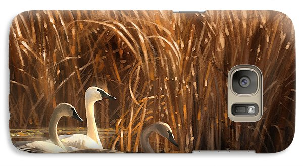 Galaxy Case featuring the digital art Autumn Light- Trumpeter Swans by Aaron Blaise