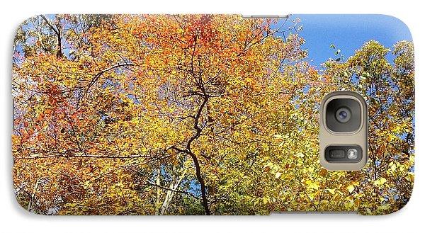 Galaxy Case featuring the photograph Autumn Limbs by Jason Williamson