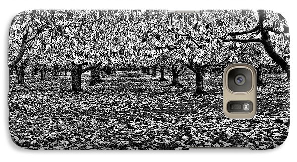 Galaxy Case featuring the photograph Autumn Orchard  by Thomas Born