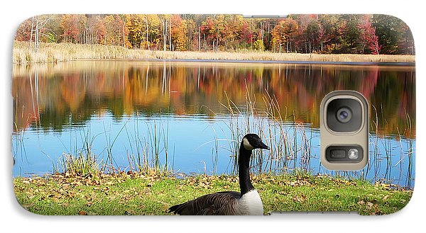Galaxy Case featuring the photograph Autumn Pond Goose by Aimee L Maher Photography and Art Visit ALMGallerydotcom