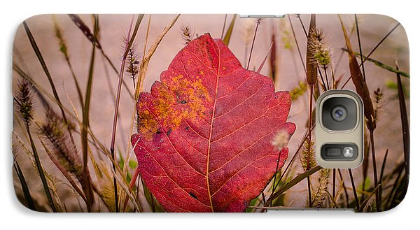 Galaxy Case featuring the photograph Autumn Rest by Julie Clements