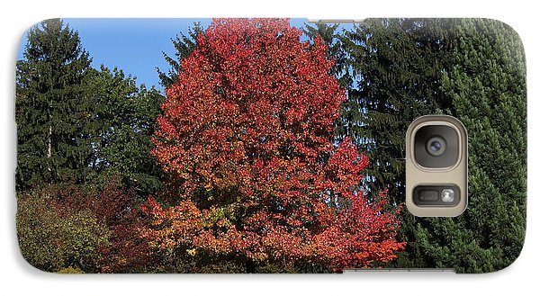 Galaxy Case featuring the photograph Autumn Scene by Bill Woodstock