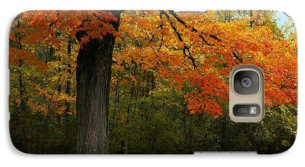 Galaxy Case featuring the photograph Autumn Splendor by Bill Woodstock