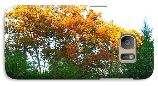 Galaxy Case featuring the photograph Autumn Sunlight by Pete Trenholm