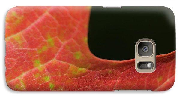 Galaxy Case featuring the photograph Autumn  by Tara Lynn