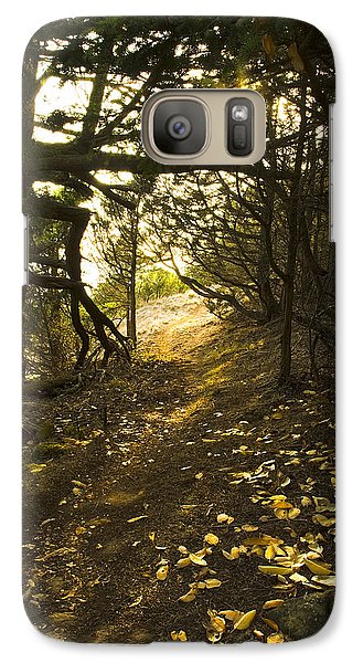 Galaxy Case featuring the photograph Autumn Trail In Woods by Yulia Kazansky