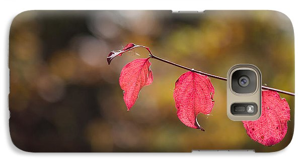 Galaxy Case featuring the photograph Autumn Twig With Red Leaves by Jivko Nakev