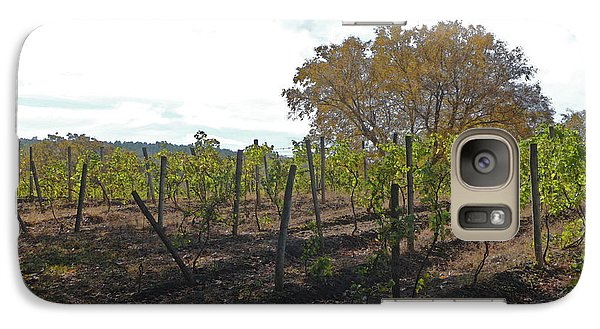 Galaxy Case featuring the photograph Autumn Vineyard by Margie Avellino