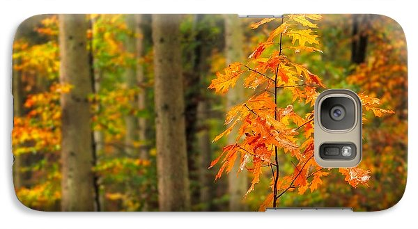 Galaxy Case featuring the photograph Autumn Walk In The Forest by Maciej Markiewicz