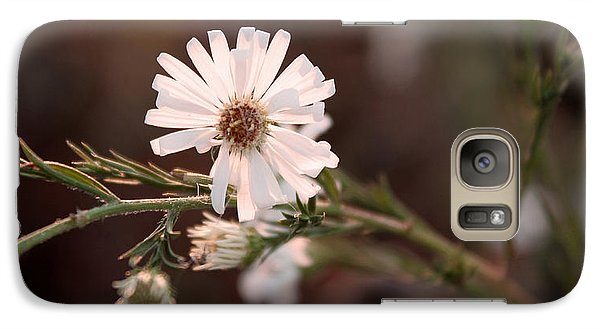 Galaxy Case featuring the photograph Autumn's Coming by Milena Ilieva