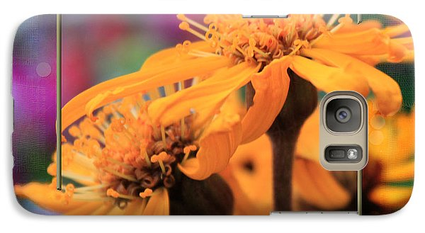 Galaxy Case featuring the photograph Autumn's Glory by Sandra Foster