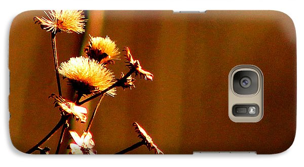 Galaxy Case featuring the photograph Autumn's Moment by Bruce Patrick Smith