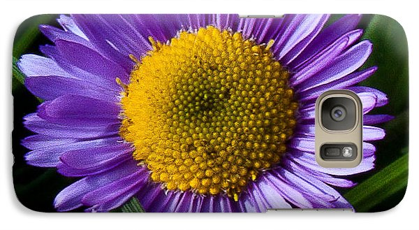 Galaxy Case featuring the photograph Awesome Daisy by Steven Reed