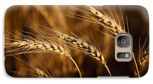 Galaxy Case featuring the photograph Awns by Scott Bean