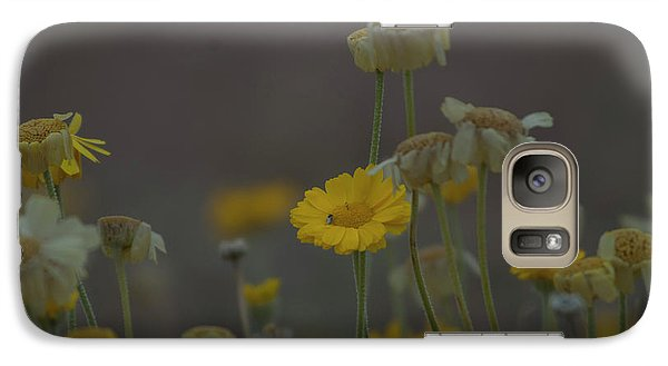 Galaxy Case featuring the photograph Az Flowers by Rod Wiens