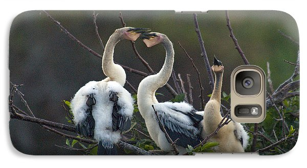 Baby Anhinga Galaxy Case by Mark Newman