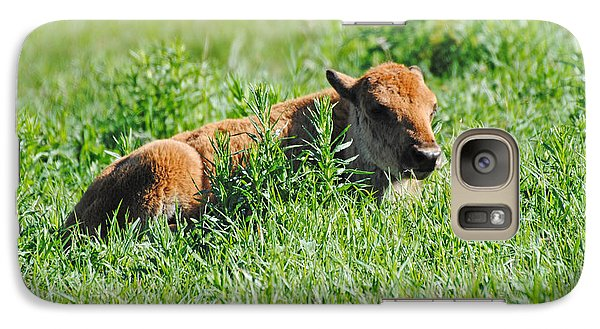 Galaxy Case featuring the photograph Baby Bison by Robert  Moss