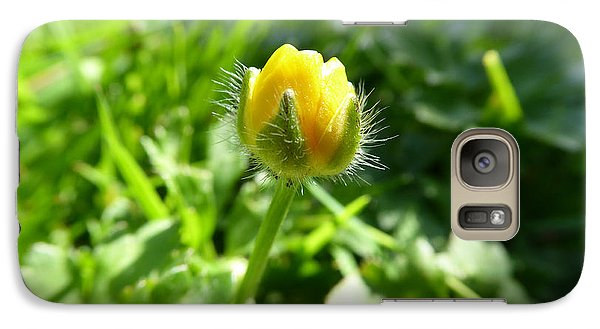 Galaxy Case featuring the photograph Baby Buttercup by Laurie Tsemak