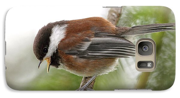 Galaxy Case featuring the photograph Baby Chickadee Calling For Mom by Peggy Collins