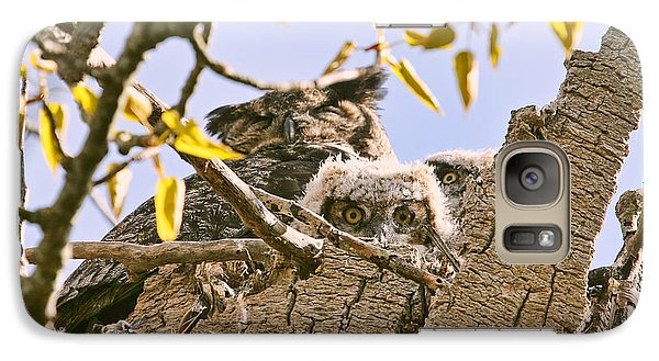 Galaxy Case featuring the photograph Baby Great Horned Owls In Nest by Peggy Collins