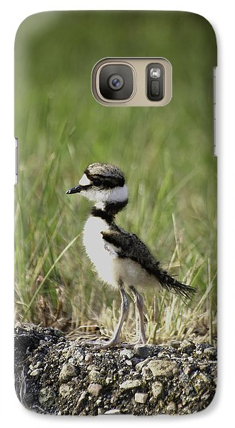 Baby Killdeer 2 Galaxy S7 Case
