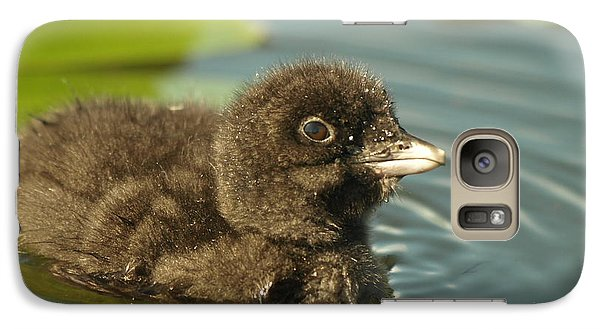 Galaxy Case featuring the photograph Baby Loon by James Peterson