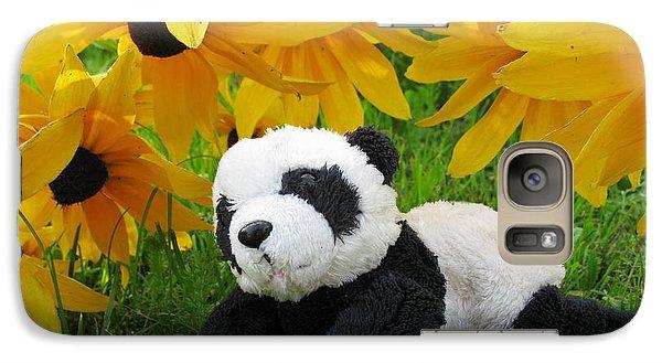 Galaxy Case featuring the photograph Baby Panda Under The Golden Sky by Ausra Huntington nee Paulauskaite