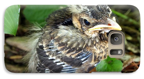 Galaxy Case featuring the photograph Baby Robin Among The Hosta's 2 by Deborah Fay