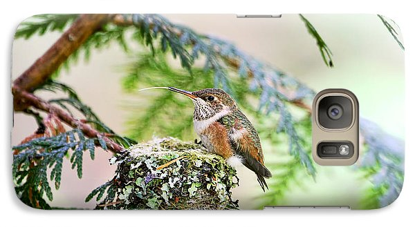 Galaxy Case featuring the photograph Baby Rufous Hummingbird by Peggy Collins