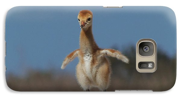 Galaxy Case featuring the photograph Baby Sandhill Crane 071 by Chris Mercer