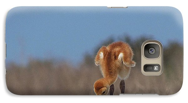 Galaxy Case featuring the photograph Baby Sandhill Crane 072 by Chris Mercer