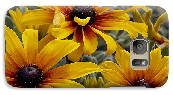 Galaxy Case featuring the photograph Back-eyed-susan by Ivete Basso Photography