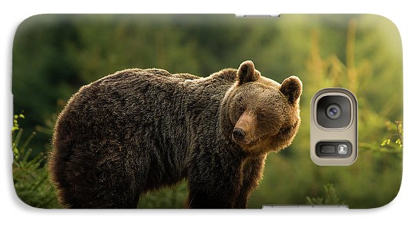Bear Galaxy S7 Case - Backlit Bear by Richard Krchnak