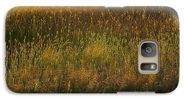 Galaxy Case featuring the photograph Backlit Meadow Grasses by Marty Saccone