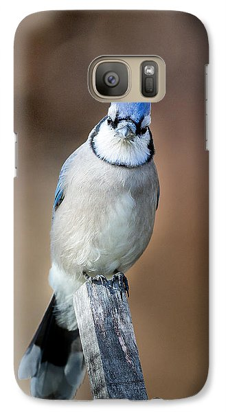 Backyard Birds Blue Jay Galaxy Case by Bill Wakeley