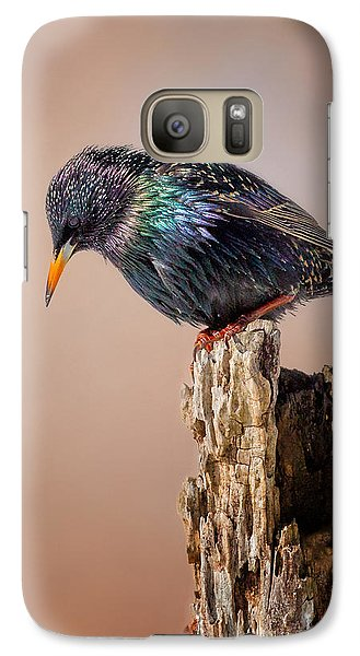 Backyard Birds European Starling Galaxy Case by Bill Wakeley