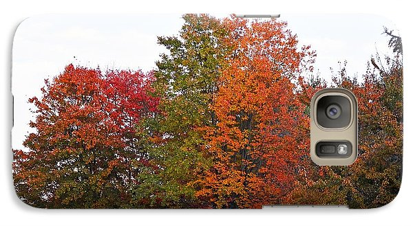 Galaxy Case featuring the photograph Backyard Trees by Judy Wolinsky