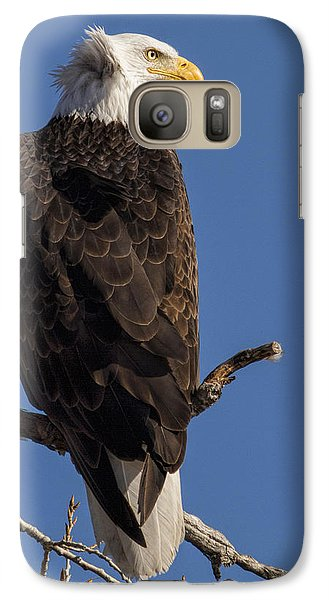 Galaxy Case featuring the photograph Bald Eagle 1 by Rob Graham