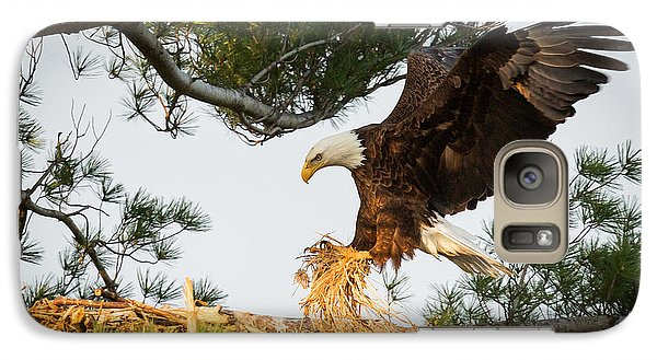 Bald Eagle Building Nest Galaxy S7 Case