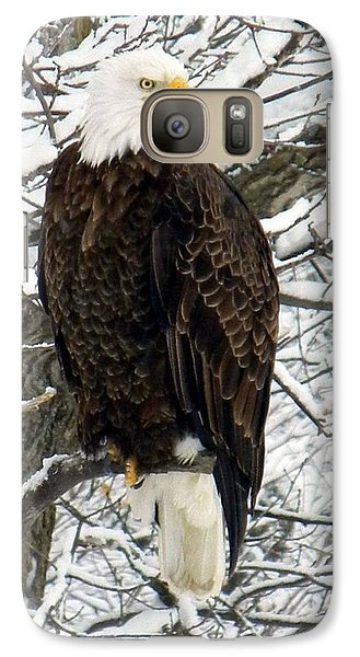 Galaxy Case featuring the photograph Bald Eagle by Penny Meyers