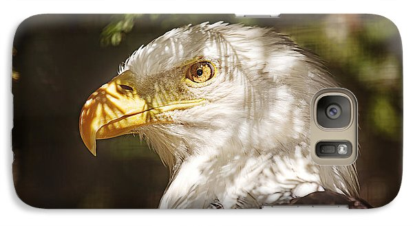 Galaxy Case featuring the photograph Bald Eagle Portrait  by Brian Cross