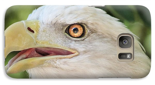Galaxy Case featuring the photograph American Bald Eagle Portrait - Bright Eye by Patti Deters