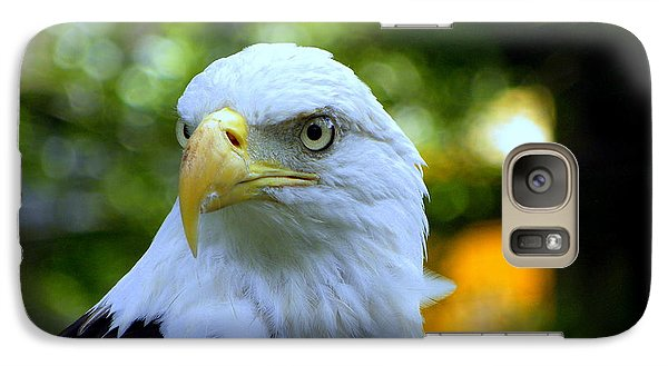 Galaxy Case featuring the photograph Bald Eagle by Terri Mills