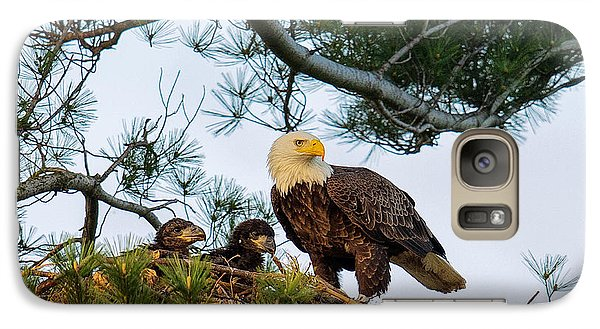 Bald Eagle With Eaglets  Galaxy S7 Case