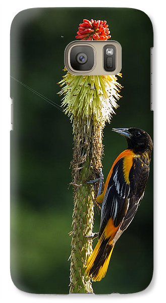 Galaxy Case featuring the photograph Baltimore Oriole Delight 2 by David Lester
