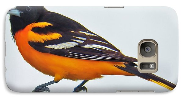 Galaxy Case featuring the photograph Baltimore Oriole Male by Judy Via-Wolff