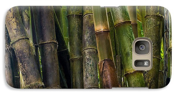 Galaxy Case featuring the photograph Bamboo by Avian Resources